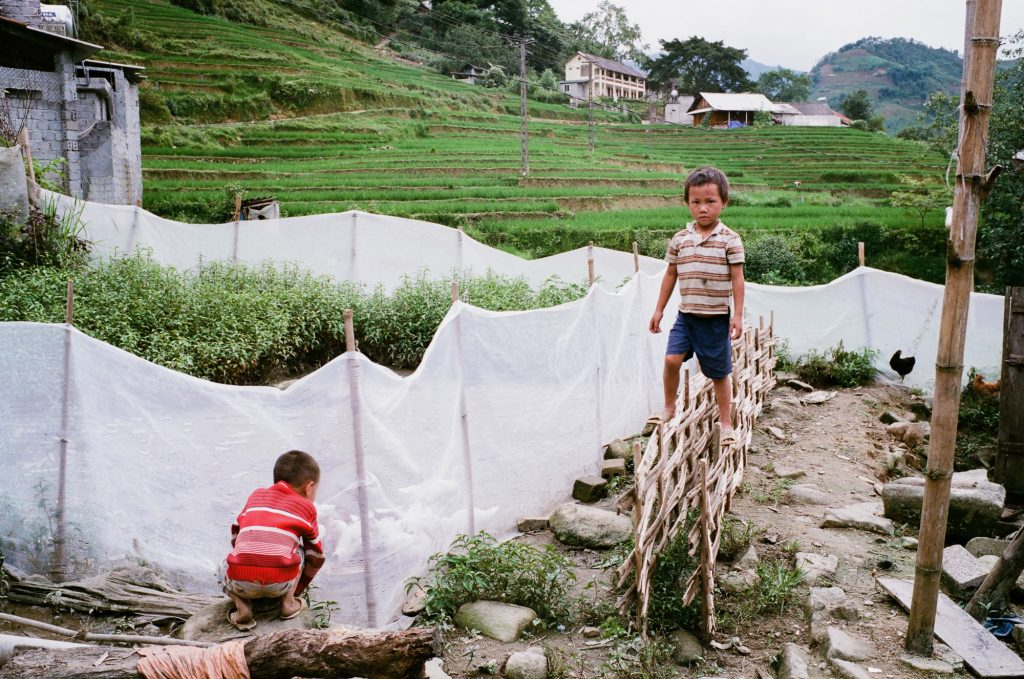 越南 背包客 沙壩 健行 Sapa Vietnam